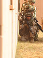 USMC-091008-M-8345L-071.jpg