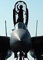 US Navy 050101-N-4308O-041 A Sailor cleans the canopy of an F-14B Tomcat.jpg