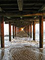 Under the Pier - geograph.org.uk - 662597.jpg