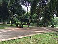 University of Indonesia area.jpg
