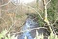 Unnamed stream in Limekiln Covert - geograph.org.uk - 366602.jpg