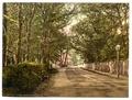 Upper Bognor Road, Bognor, England-LCCN2002696395.tif