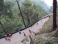 Vaishnodevi trail from Katra 66.JPG
