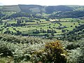 Vale of Llangollen - geograph.org.uk - 541858.jpg