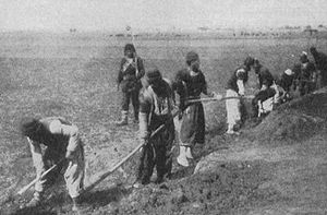 Defense of Van (1915) - Armenians digging trenches