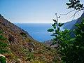 Vegetation contrasts blue sea and sky 2.jpg