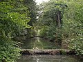Ventiford Brook - geograph.org.uk - 579358.jpg