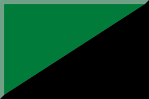 2014–15 Damehåndboldligaen - Image: Verde e Nero in diagonale