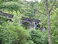 Viaduct above Loch Lomond - geograph.org.uk - 214935.jpg