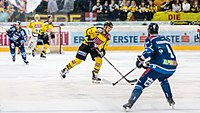 Vienna Capitals vs Fehervar AV19 -70.jpg