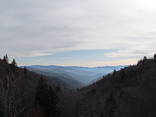 View from Newfound Gap Road, Great Smoky Mountains National Park, NC.jpg
