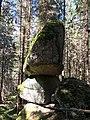 Viklan v Novohradských horách ( Pohoří na Šumavě ).jpg