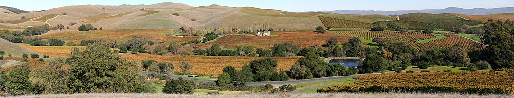 Vista panorâmica dos vinhedos do Napa Valley, California