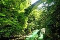 Vintgar Gorge (35642962392).jpg