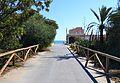 Vista cap a la mar des d'un camí de les dunes, Guardamar.JPG