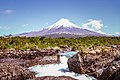 Volcan desde Parque nacional Vicente Pérez Rosales H.jpg