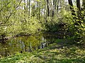 Wanderweg entlang des Tegeler Fließes - panoramio.jpg