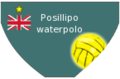 WaterPoloSwimsuits back Posillipo 2010-2011.png