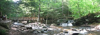 Ricketts Glen State Park - Waters Meet is the heart of the park, where Ganoga Glen and Glen Leigh meet; the trees in the glens have never been cut.