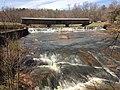 Watson Mill Bridge Downstream - Comer, GA.jpg