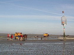 Mudflat car with day trippers in the Sahlenburger Watt near Cuxhaven, on the way to the Neuwerk