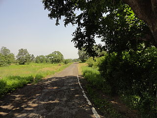 Ratapani Tiger Reserve