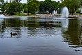 Wentworth park, Sydney (40469233975).jpg