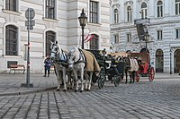 Wien Michaelerplatz Fiaker-3265.jpg