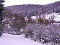 Winter In Autumn - panoramio.jpg