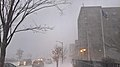 Winter in Buffalo - ...And So It Begins - Dec 2016.jpg