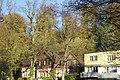 Wolfesberg - panoramio.jpg
