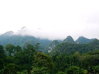 Phú Thọ Province - Xuân Sơn National Park