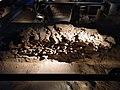 Yacimiento arqueológico fenicio de Gadir (Cádiz) 04.jpg