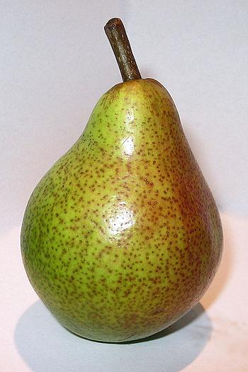 English: Pear Polski: Gruszka