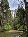Yosemite Falls in summer 2019.jpg