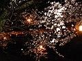 Yoshienaka, Nanto, Toyama Prefecture 939-1702, Japan - panoramio (3).jpg