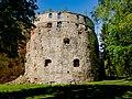 Zamek w Brzeżanach P1600940.jpg