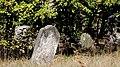 Zduńska Wola, Kacza 18, Cmentarz żydowski-011.JPG