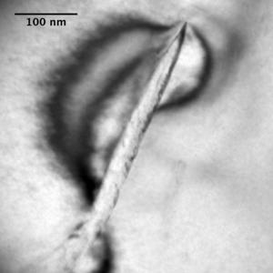Zirconium alloy - Image: Zirconium Hydride in the microstructure of Zircaloy 4