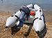 Zodiac Inflatable Boat - 2.jpg