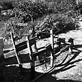 """Štant"" za blago kovat, Osp 1949.jpg"