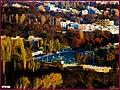 (((پاییز مراغه از بالای پارک معلم ))) - panoramio.jpg