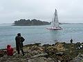 Île de Berder-Trimaran rose (1).jpg