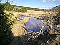 Řeka Jizerka 1.jpg