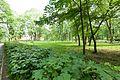 Виноградів Парк 4656.jpg
