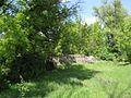 Дендрологічний парк 154.jpg
