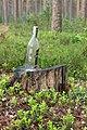 Кургальский полуостров, водочная бутылка.jpg