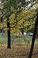 Осінь у Хаджибейському парку. с. Холодна Балка.jpg