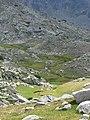 Р. Бъндерица. Изглед от пътя за хижа Синаница, Пирин.jpg
