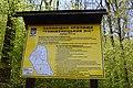 Теліженецький ліс DSC 0022.jpg